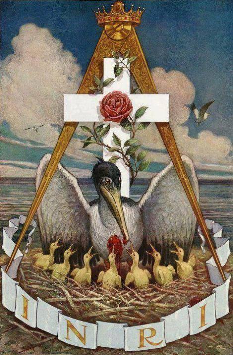 Simbolismo do Pelicano